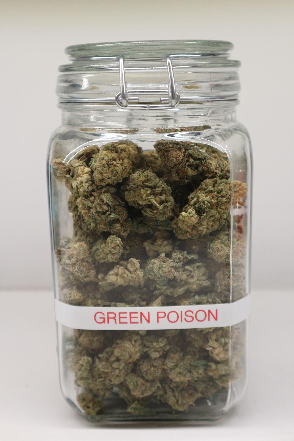 Green Poison